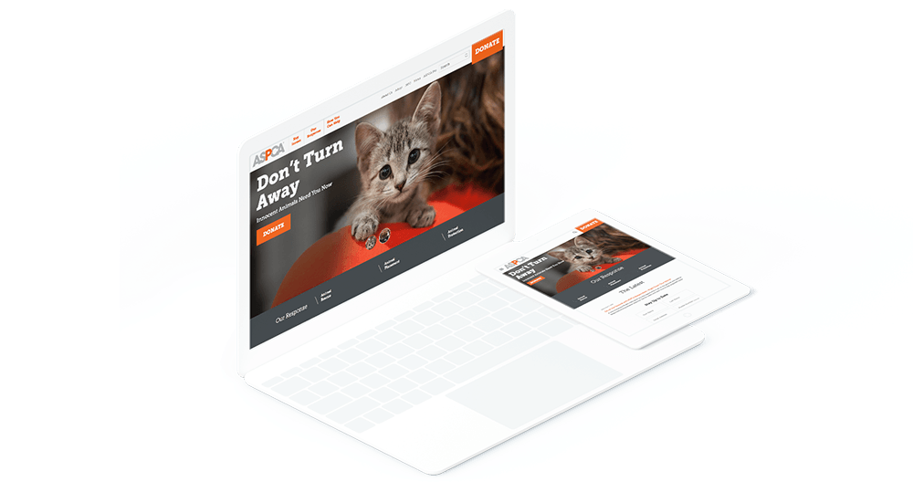 ASPCA website on computer and phone